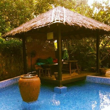 Planet Borneo Lodge: The dip pool