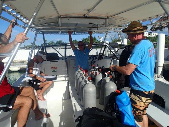 تركس وكايكوس: Getting ready to go with Captain Fifi and Gus