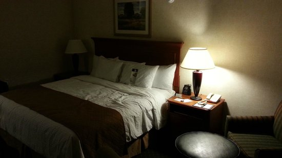 DoubleTree by Hilton Hotel Madison: Comfortable bed with superb pillows