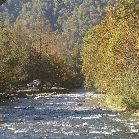 Yogi in the Smokies: River view