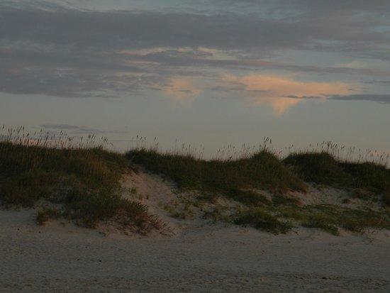 Ocracoke Campground: Dunes