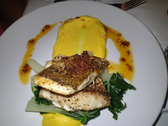 Stelle : Pan Seared Red Snapper with Kale Bok Choy and Pureed Pumpkin