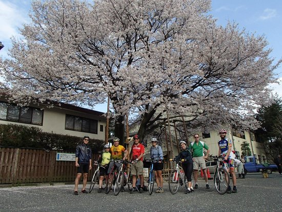 Japan Biking - Day Tours