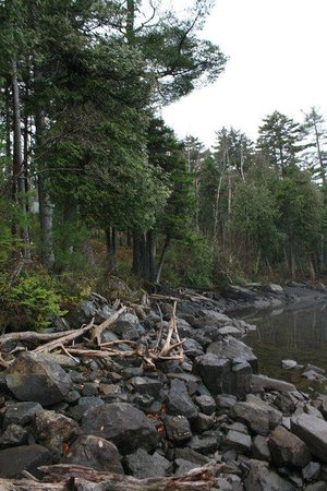 Moosehead Hills Cabins: Loon Lodge Lakeside 2