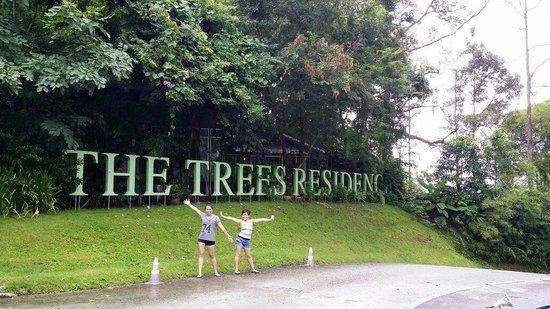 The Trees Club Resort: near the reception