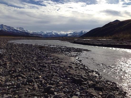 Teklanika River: tek river behind the campground