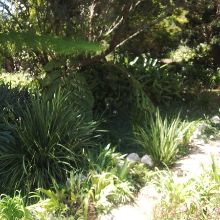Wildebraam Berry Estate : Beautiful Landscaping