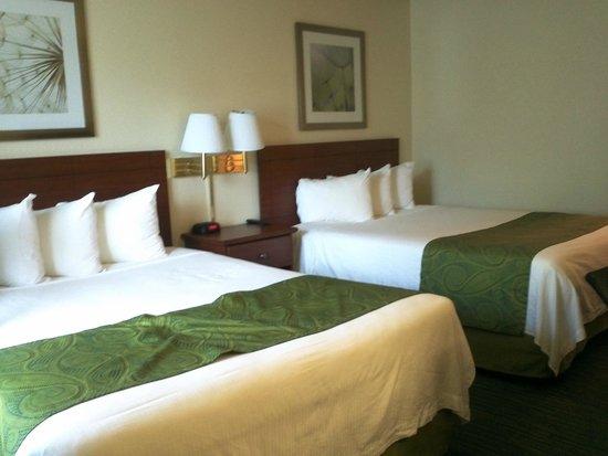 Days Inn Bellevue Seattle: Comfy beds