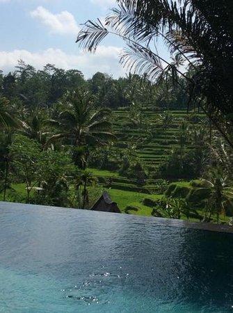 Pondok Sebatu Villa: breakfast view