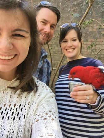 Birmingham Zoo: Feeding the Lorikeets!
