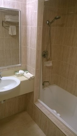 The Great Southern Hotel: Bathroom - basic