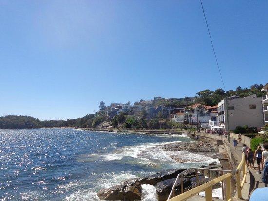 Shelly Beach: По дороге из Менли к Шелли Бич