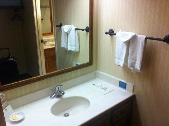 Hilton Garden Inn Palm Springs/Rancho Mirage: Bathroom