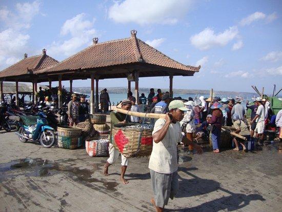 Villa Puri Royan: Marché au poisson
