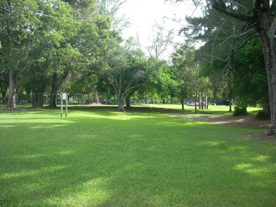 Dante Fascell Park: Green Space
