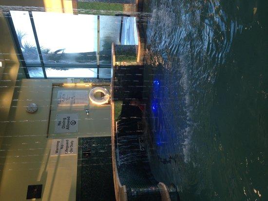 Holiday Inn Oceanside Virginia Beach: Hotel pool was nice