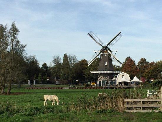 Spakenburg, The Netherlands: Amazing Windmill