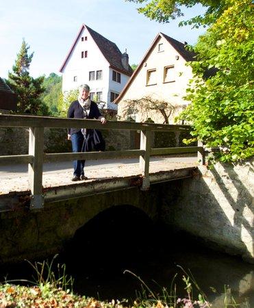 Pension Fuchsmühle: view outside Pension Fuchsmuehle
