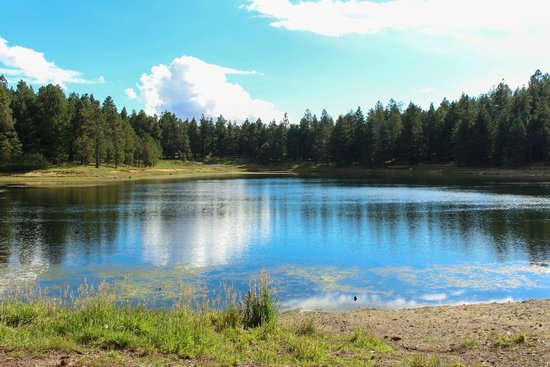 Mount Graham International Observatory: Riggs Lake - It's worth the extra miles!