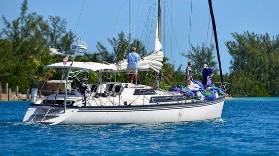 Ace Sailing Charters
