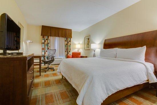 Hilton Garden Inn Clarksville: King Guest Room