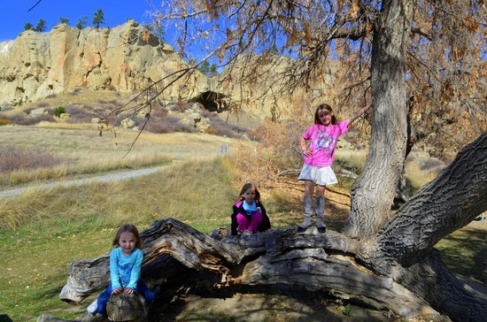 Pictograph Cave State Park: Tree climbing in the picnic area