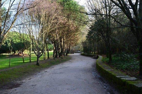 Parque da Cidade do Porto: Avenida parque