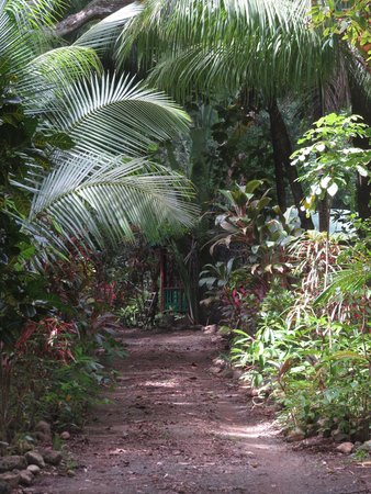 Casa Don Tomas: Secluded Driveway