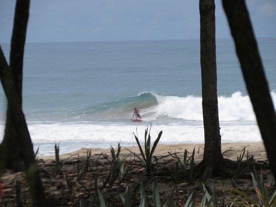 Casa Don Tomas: Surfs Up!