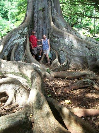 National Tropical Botanical Garden: Cool!