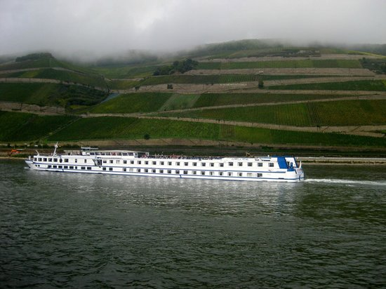 Rhine River Day Cruises: Breathtaking views of the hills and vineyards