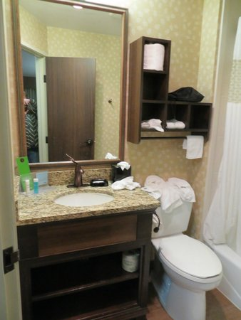 Hampton Inn Jackson Hole: Guestroom bathroom