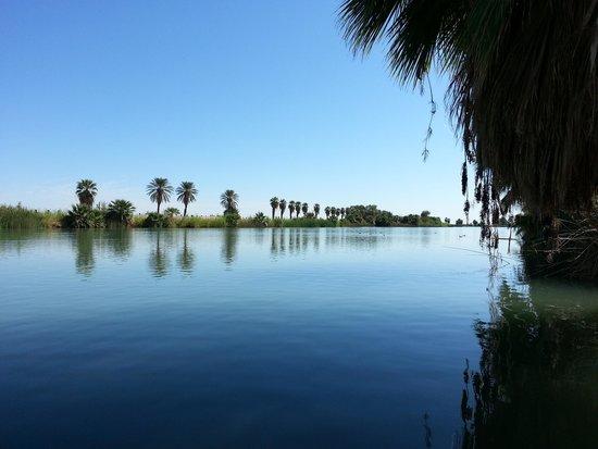 Sunbeam Lake Hotel Reviews El Centro Ca Tripadvisor