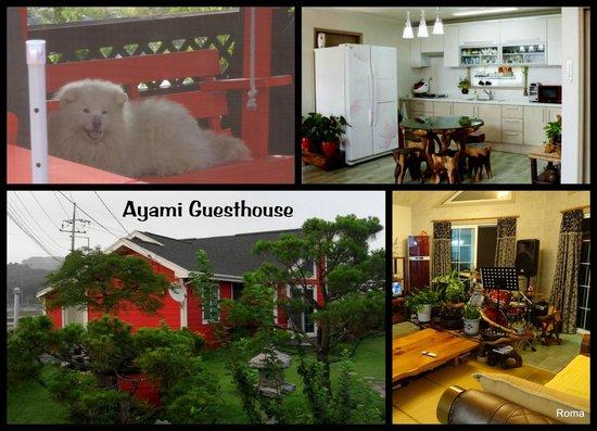 Ayami Guesthouse