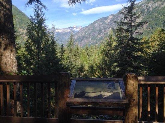 North Cascade Visitors Center: Views