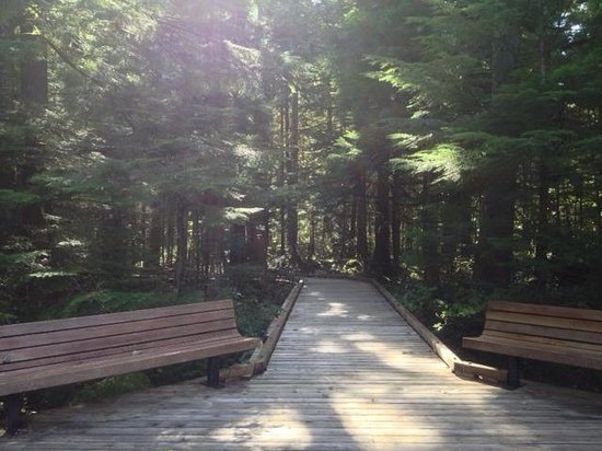 North Cascade Visitors Center: Easy Access to Viewpoint