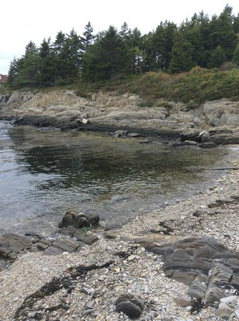 Driftwood Inn and Cottages : Great view from cottage of the rocky coast of Maine