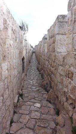 Ramparts Walk: View along the ramparts near Jaffa Gate