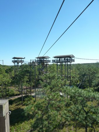 Forever Florida: More zipline towers