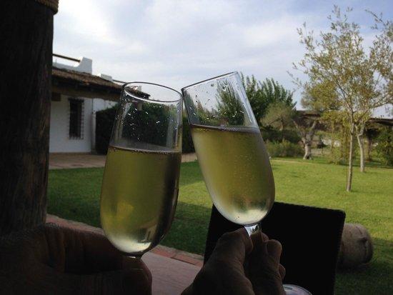Ardea Purpurea Lodge: Cheers