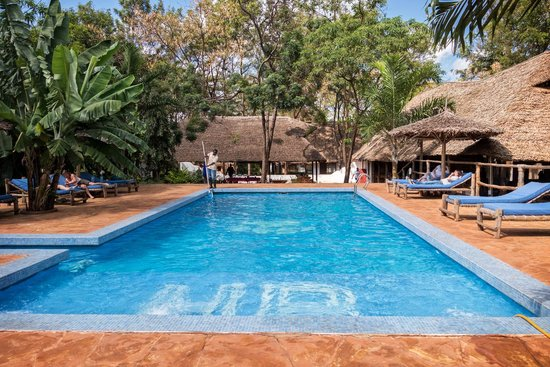 Honey Badger Lodge: The excellent pool area - cleaned almost constantly.