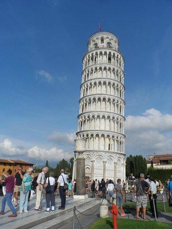foto de Leaning Tower at Night Picture of Torre di Pisa Pisa