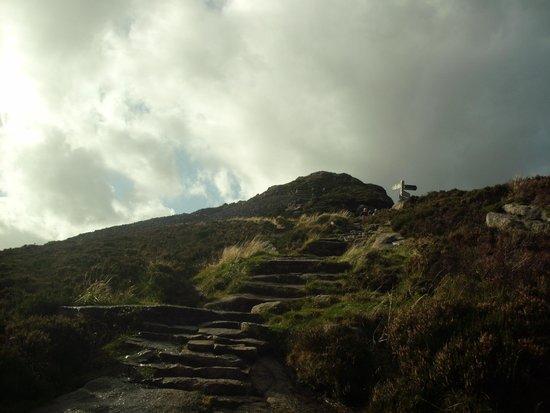 Bennachie Hill Walks: The stairs towards the summit