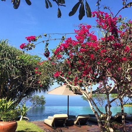 Bulgari Resort Bali: Amazing poll with beautiful garden from Bulgari Hotel Uluwatu
