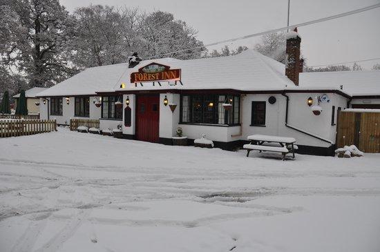 The Forest Inn at Ashurst