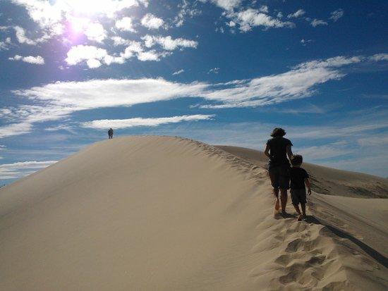 Kelso Dunes: walking up the highest dune!