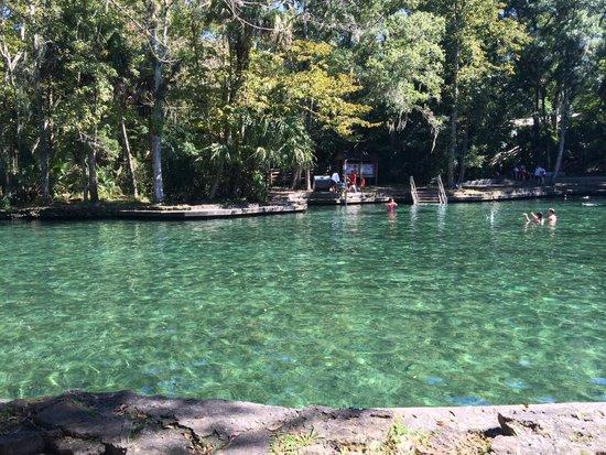 Hammock Island Florida