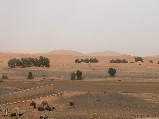 Kasbah Azalay Merzouga: Dunas desde el hotel