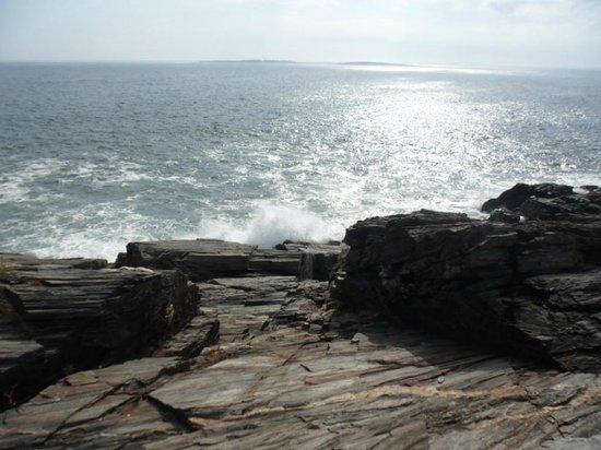 Prouts Neck, ME: Prout's Neck Cliff Walk