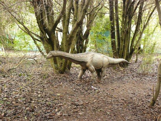 Parque Nahuelito: Argentinosaurio